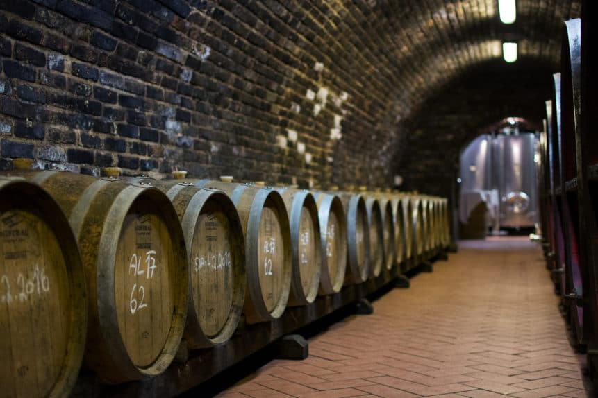 lineup of wine barrels